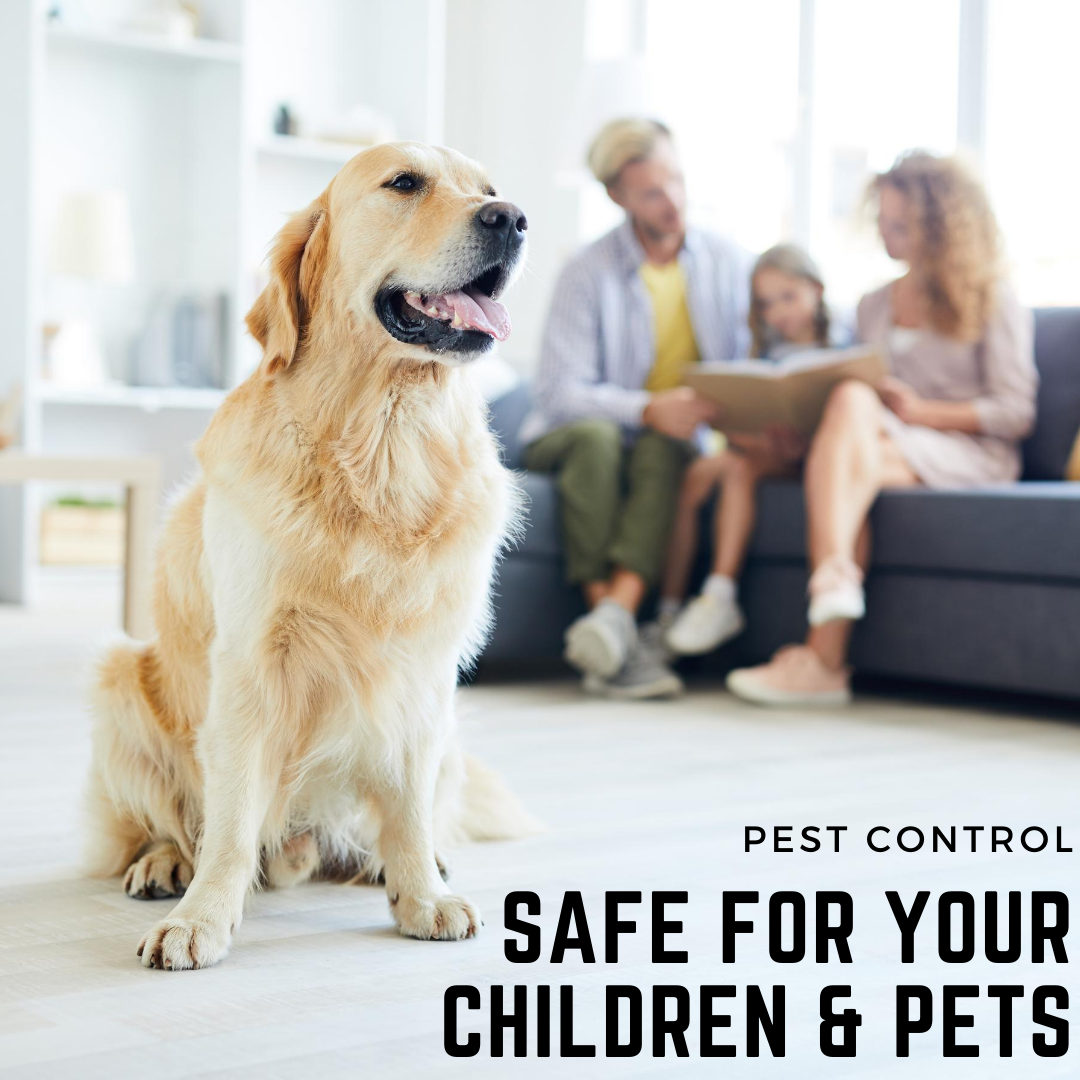 Safe for your Children & Pets